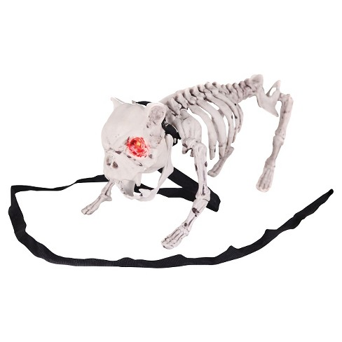 Halloween Barking Dog Skeleton Target