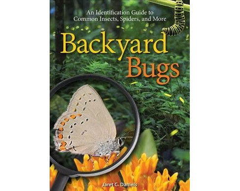 Backyard Bugs : An Identification Guide to Common Insects, Spiders, and More (Paperback) (Jaret C. - image 1 of 1