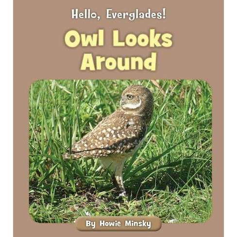 Owl Looks Around - (Hello, Everglades!) by  Howie Minsky (Paperback) - image 1 of 1