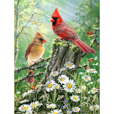 Springbok Spring and Summer: Golden Light Puzzle 500pc