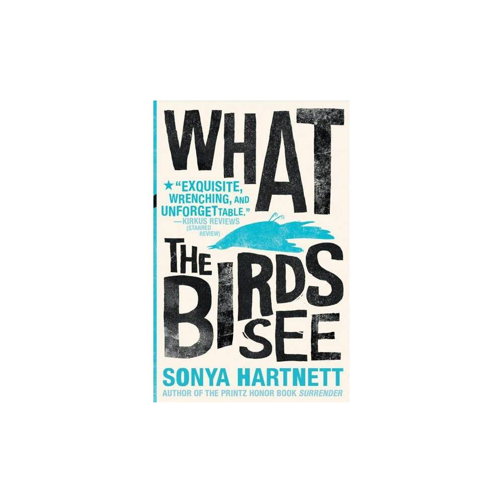 What the Birds See - by Sonya Hartnett (Paperback)