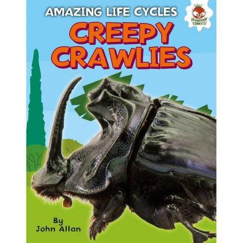 Creepy Crawlies - (Amazing Life Cycles) by  John Allan (Hardcover) - image 1 of 1
