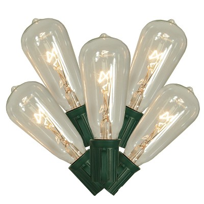 Northlight 10ct Transparent ST40 Edison Style Decorative Christmas Lights Clear - 9' Green Wire