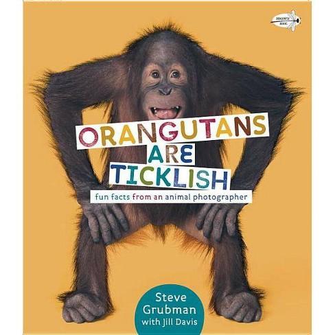 Orangutans Are Ticklish - by  Jill Davis (Paperback) - image 1 of 1