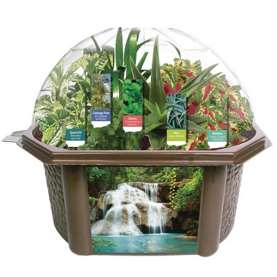 Dunecraft Sensory Eco-Biosphere Plant Dome with 5 Different Plant Seeds