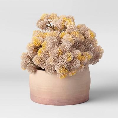 """6"""" x 7"""" Artificial Round Sedum Plant Arrangement in Ceramic Pot - Threshold™"""