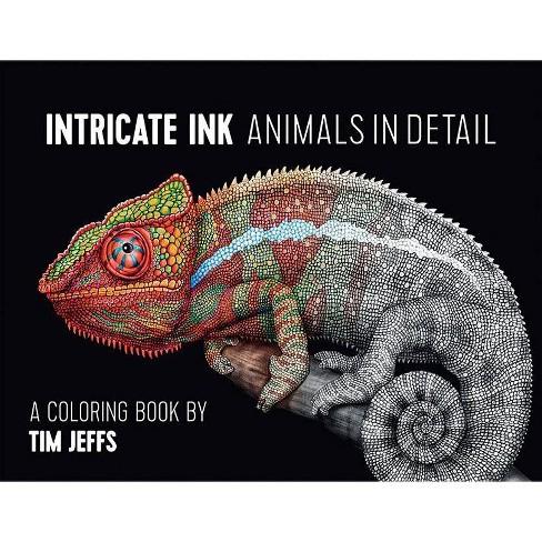 CBA Jeffs/Intricate Ink - (Hardcover) - image 1 of 1