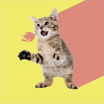 Laser Kitty Greeting Card