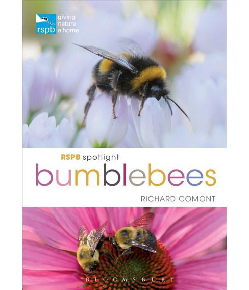 Bumblebees (Paperback) (Richard Comont) - image 1 of 1