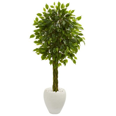4.5ft Braided Ficus Artificial Tree In White Planter - Nearly Natural