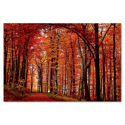 The Red Way' by Philippe Sainte-Laudy Ready to Hang Canvas Wall Art