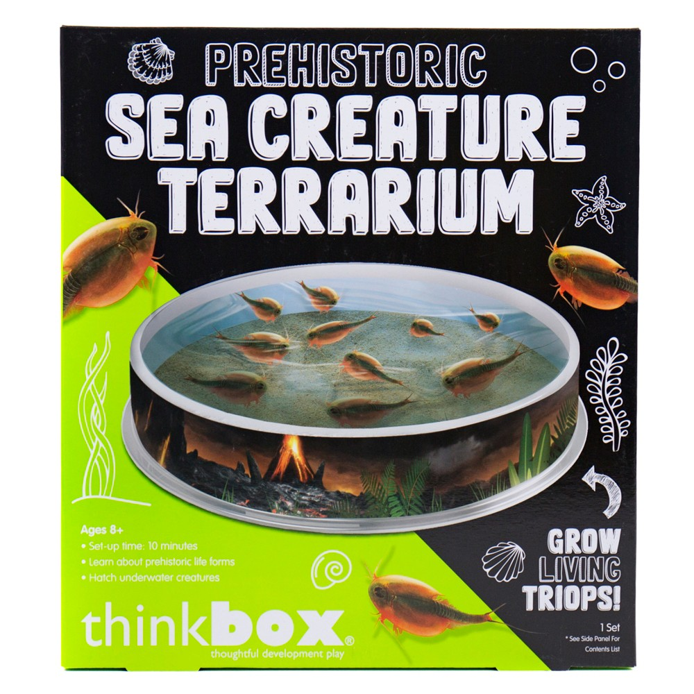 Image of Prehistoric Sea Creatures Terrarium - Thinkbox