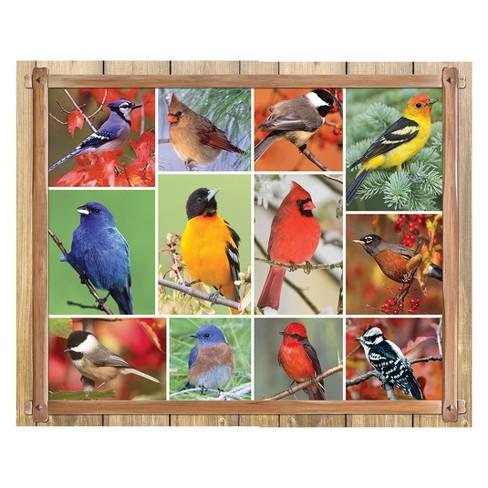 Springbok Songbirds Puzzle 1000pc - image 1 of 1