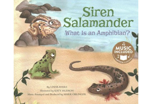 Siren Salamander : What Is an Amphibian? (Paperback) (Linda Ayers) - image 1 of 1