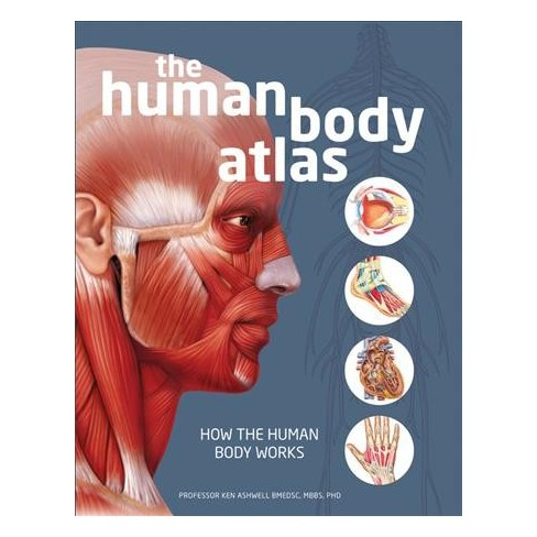 Human Body Atlas How The Works Hardcover Phd Ken
