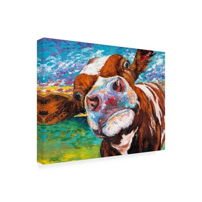 "24"" x 32"" Curious Cow I by Carolee Vitaletti - Trademark Fine Art"
