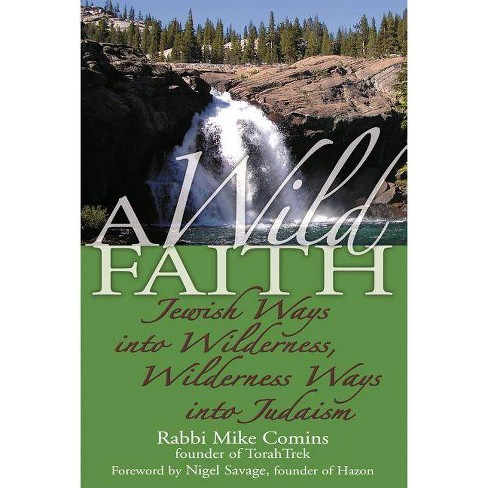A Wild Faith - by  Mike Comins (Paperback) - image 1 of 1