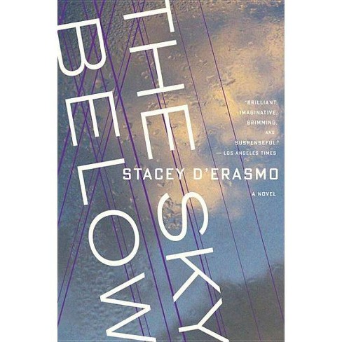 The Sky Below - by  Stacey D'Erasmo (Paperback) - image 1 of 1