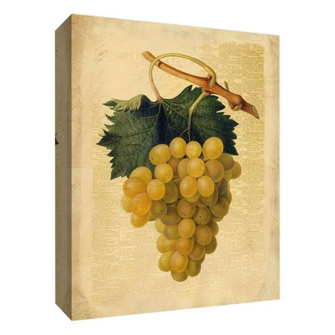 """Yellow Grapes Decorative Canvas Wall Art 11""""x14"""" - PTM Images - image 1 of 1"""