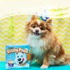 Purina Frosty Paws Peanut Butter Flavor Frozen Dog Treats - 4pk - image 2 of 3