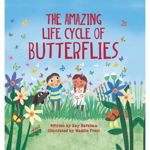 The Amazing Life Cycle of Butterflies - (Look and Wonder) by  Kay Barnham (Hardcover) - image 1 of 1