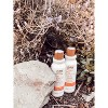 Raw Sugar The Bounce Back Mango Butter + Agave + Carrot Oil Shampoo - 18 fl oz - image 3 of 4