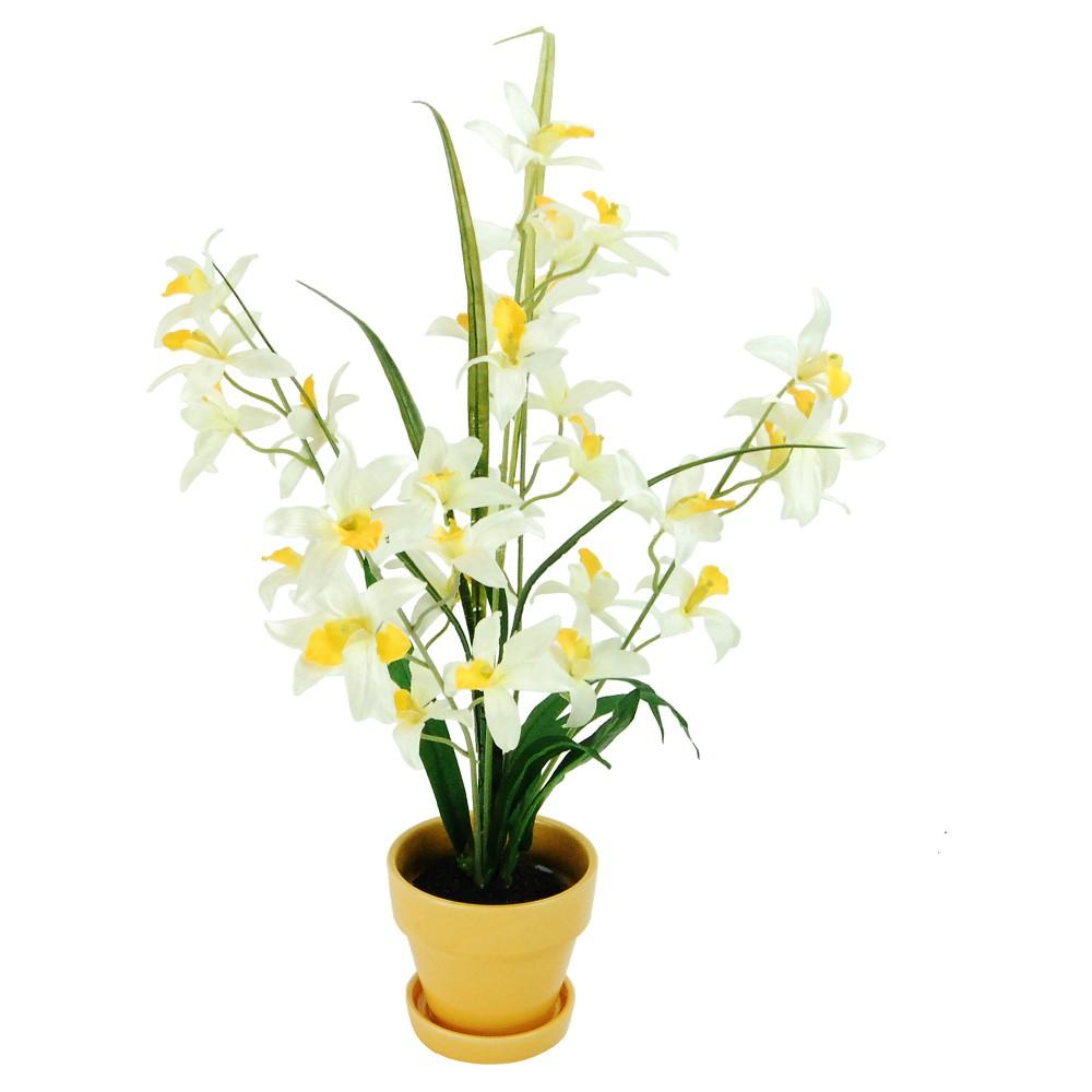 Artificial Orchid Arrangement Yellow/White 24 - Lcg Florals