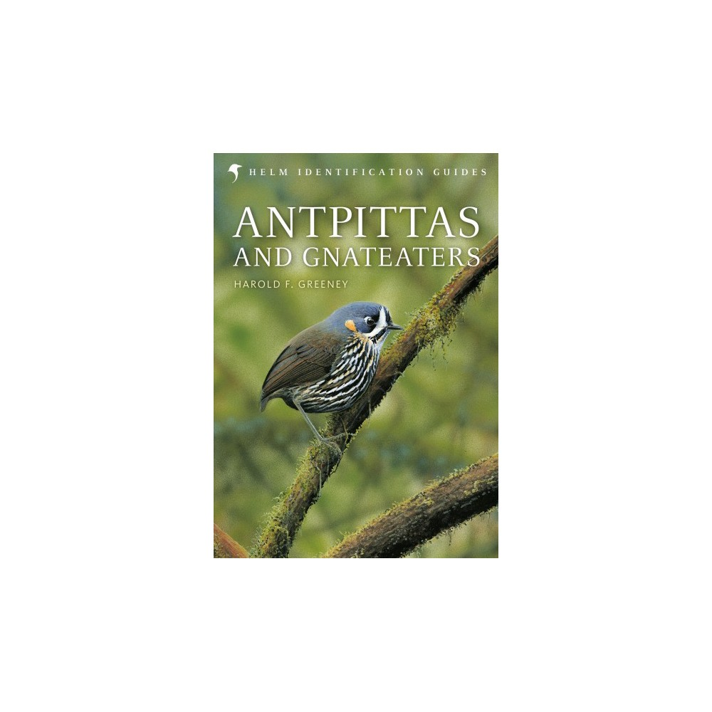 Antpittas and Gnateaters - (Helm Identification Guides) by Harold F. Greeney (Hardcover)