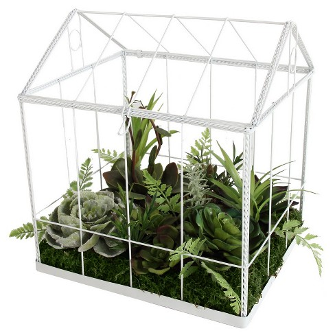 """A & B Home 10"""" Artificial Succulent Garden in Greenhouse - Green/White - image 1 of 2"""