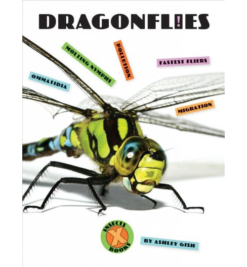 Dragonflies -  (X-Books: Insects) by Ashley Gish (Paperback) - image 1 of 1