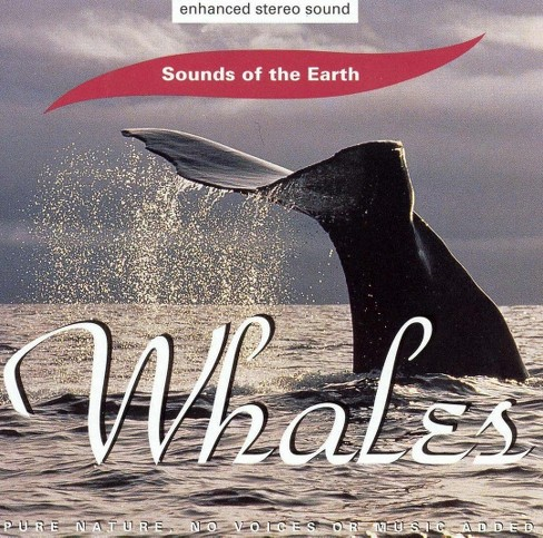 Artist not provided - Whales (CD) - image 1 of 1