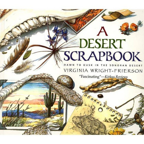 Desert Scrapbook - by  Virginia Wright-Frierson (Paperback) - image 1 of 1