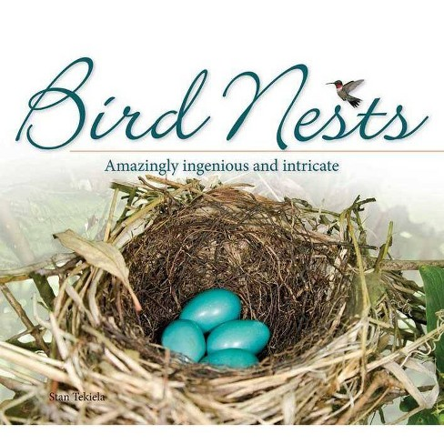 Bird Nests - (Bird Appreciation) by  Stan Tekiela (Paperback) - image 1 of 1