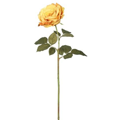 """Artificial (Pk/6) Open Rose Stem (25"""") Dark Yellow - Vickerman - image 1 of 2"""