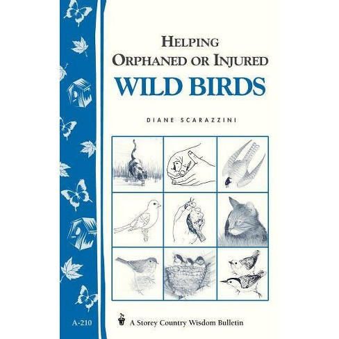 Helping Orphaned or Injured Wild Birds - (Storey Country Wisdom Bulletin) by  Diane Scarazzini - image 1 of 1