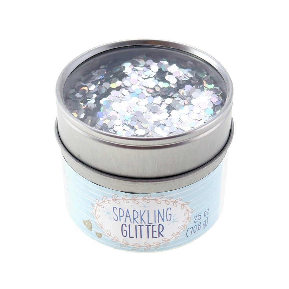 Image of 2.5oz Glitter Silver Holographic - Sulyn