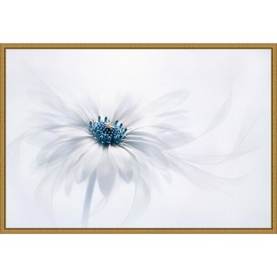"""23"""" x 16"""" Serene Flower by Jacky Parker Framed Wall Canvas White - Amanti Art"""