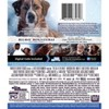The Call of the Wild (Blu-Ray + DVD + Digital) - image 2 of 2