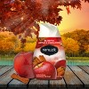 Renuzit Gel Air Freshener - Blissful Apple and Cinnamon - 7oz/3ct - image 3 of 4