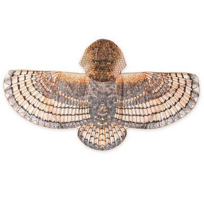 Hooded Realistic Owl Wings