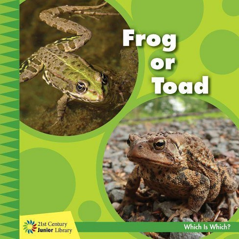 Frog or Toad - (21st Century Junior Library: Which Is Which?) by  Tamra Orr (Paperback) - image 1 of 1