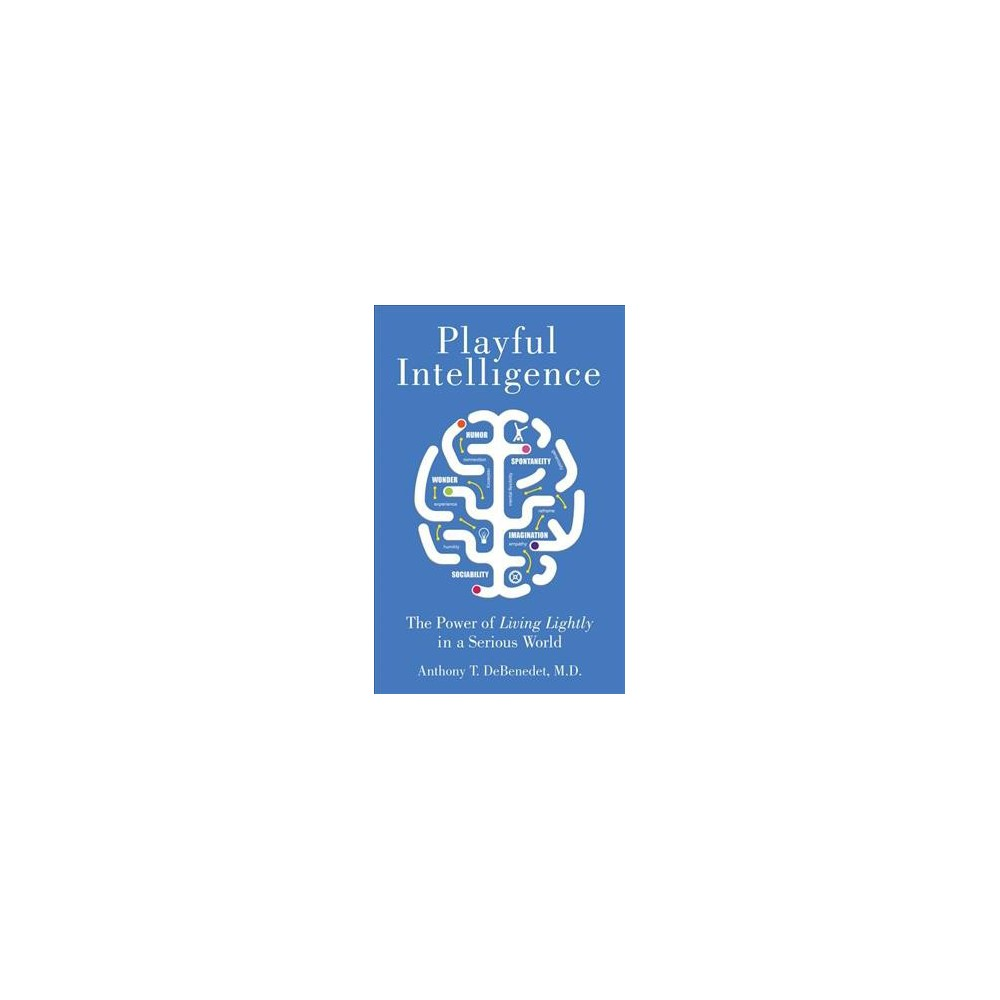 Playful Intelligence : The Power of Living Lightly in a Serious World - (Paperback)
