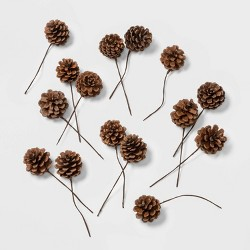 40ct Artificial Christmas Pine Cones - Wondershop™