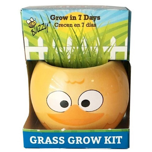 Grow Kits Farm Animal - Duck - Yellow - Buzzy Seeds - image 1 of 2