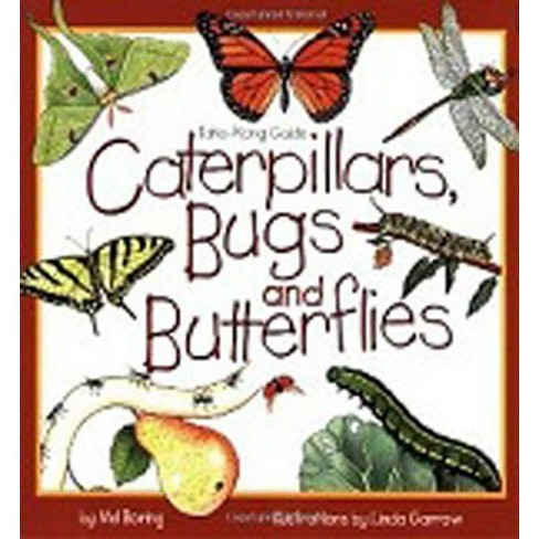 Caterpillars, Bugs and Butterflies - (Take-Along Guides) by Mel Boring (Paperback) - image 1 of 1
