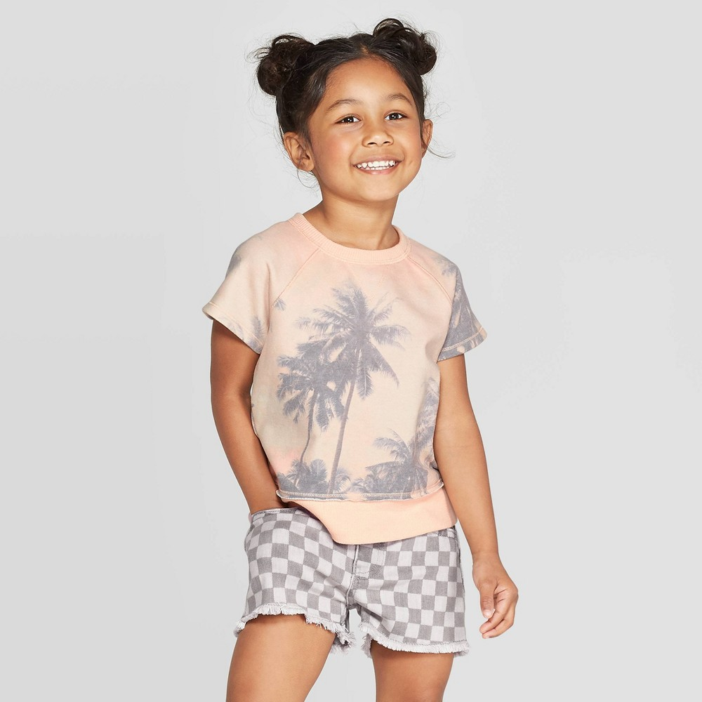 Best Review Toddler Girls Palm Tree Sweatshirt Art Class Pink 2T Orange