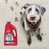Resolve Large Area Pet Carpet Cleaner Machine Solution 60 oz - image 2 of 4