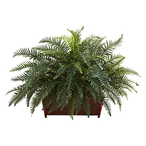 Nearly Natural River Fern with Wood Planter - image 1 of 1