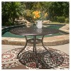 Phoenix Round Cast Aluminum Table - Hammered Bronze - Christopher Knight Home - image 2 of 4