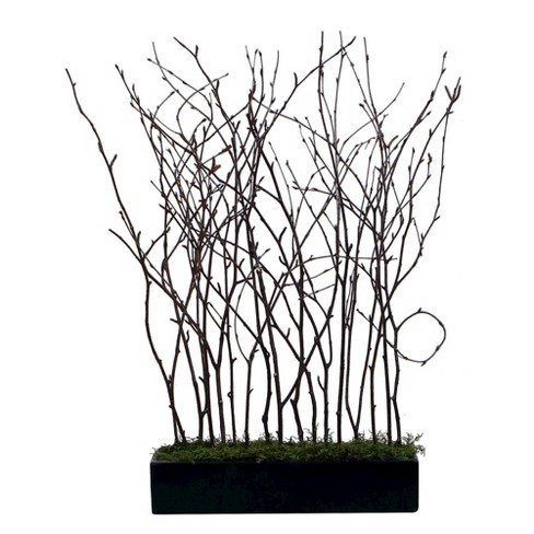 "Artificial Young Birch Trees in Moss Planter (24"") - image 1 of 3"